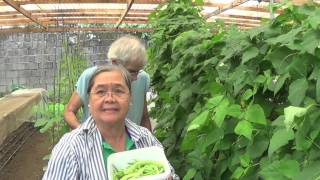 Organic Farming in the Philippines (Reality TV, Se 3 Ep 18: Lovers in paradise!)